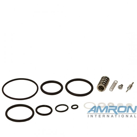 389-1875 Regulator Repair Kit for 44-13XX-XXX1