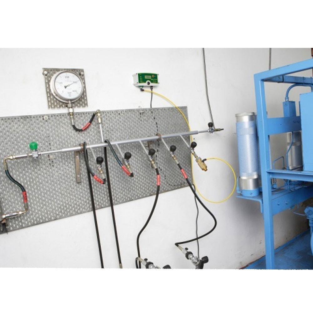 Analox CO2535X56XXY16 CO Clear Alarm - Nitrogen Environment 110V AC US Power